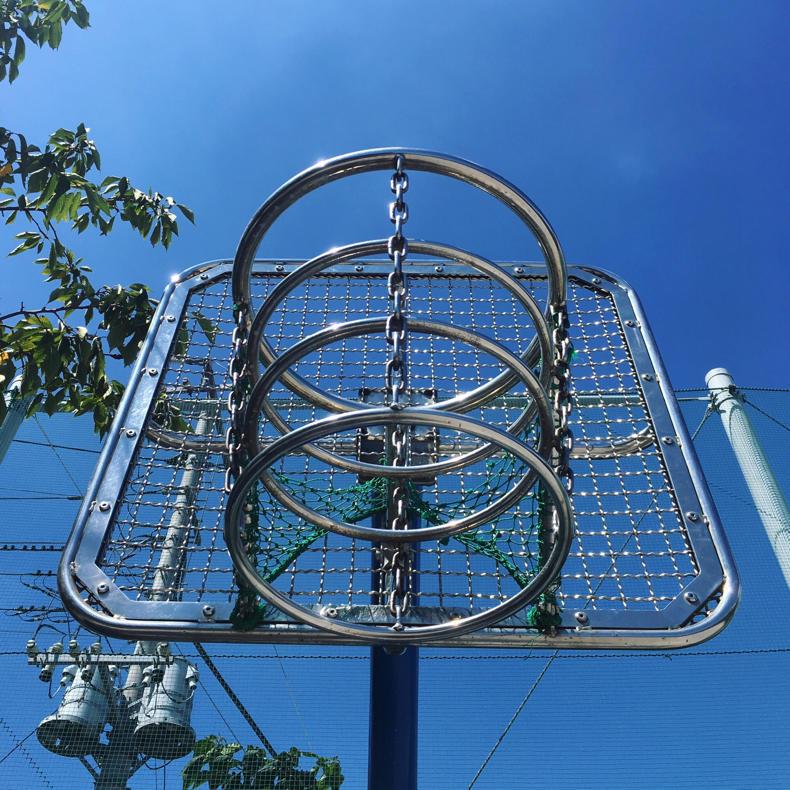 バスケのゴールに遊ばれる_c0060143_14033515.jpg