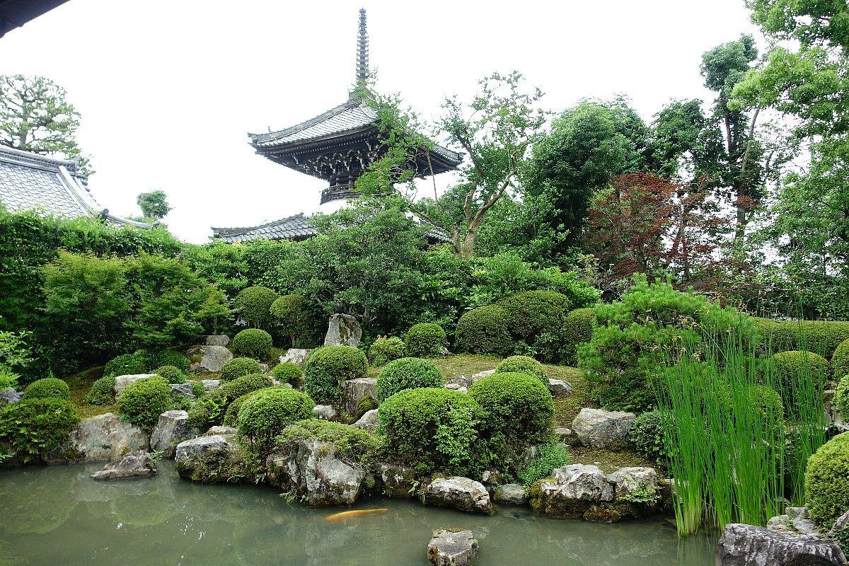 菩提山 穴太寺(その3)庭園_c0112559_07402892.jpg
