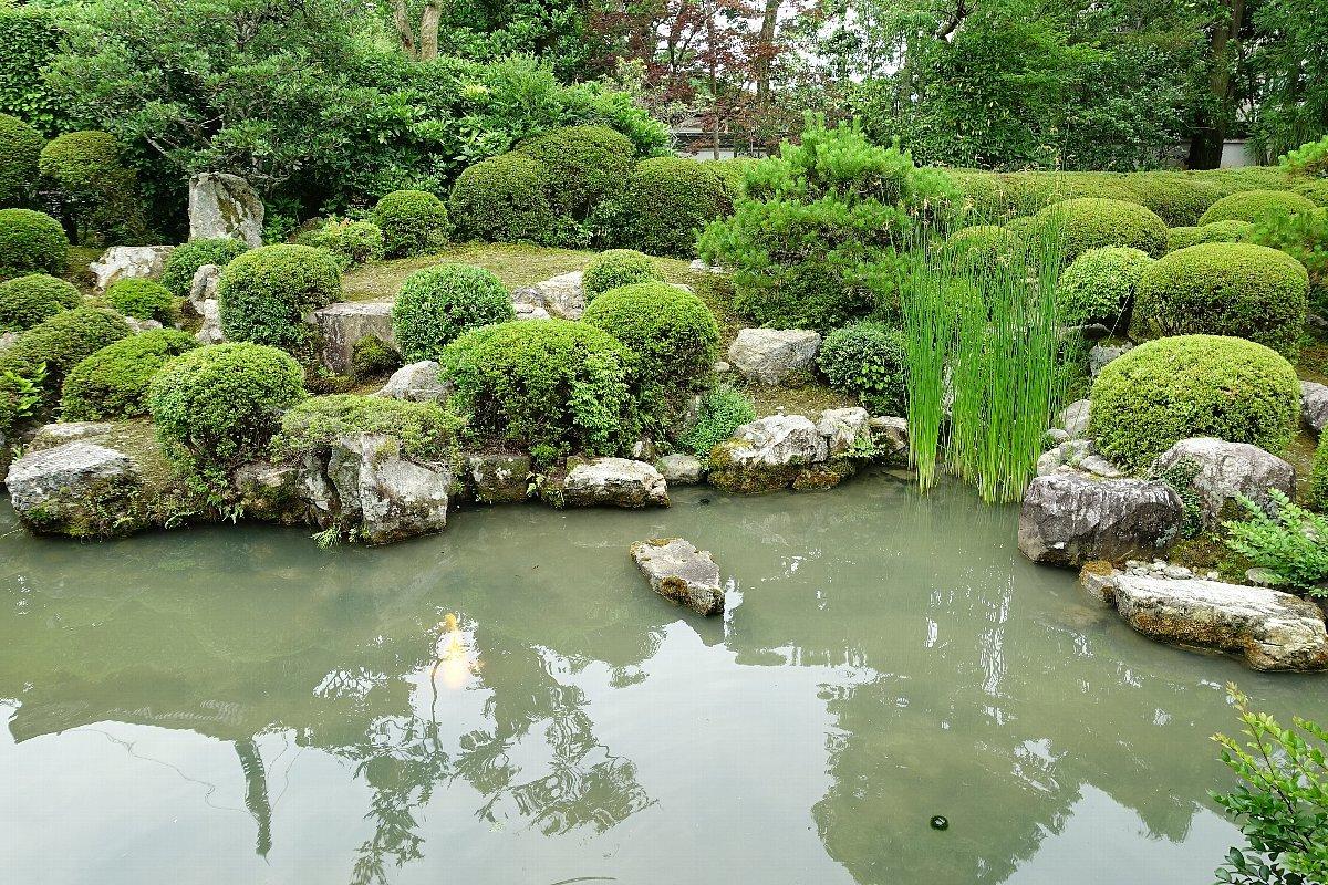 菩提山 穴太寺(その3)庭園_c0112559_07441570.jpg