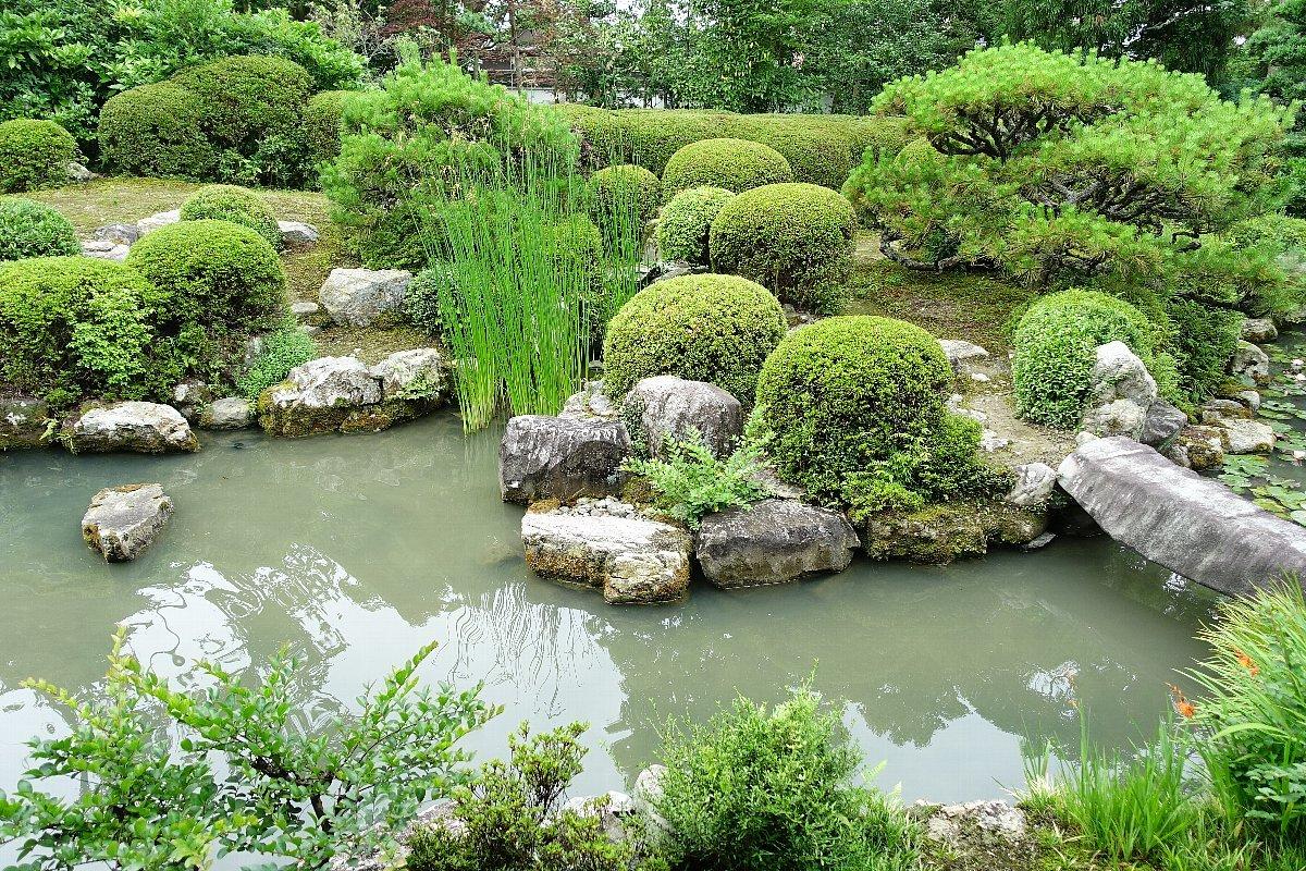 菩提山 穴太寺(その3)庭園_c0112559_07451765.jpg