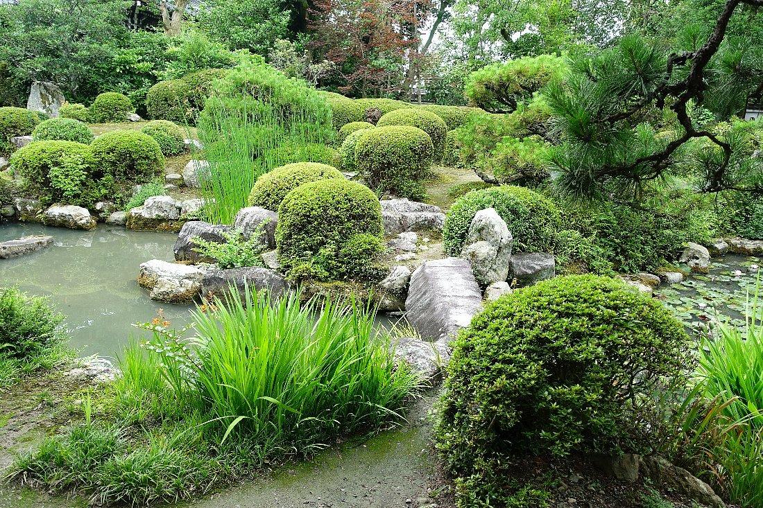 菩提山 穴太寺(その3)庭園_c0112559_07453672.jpg