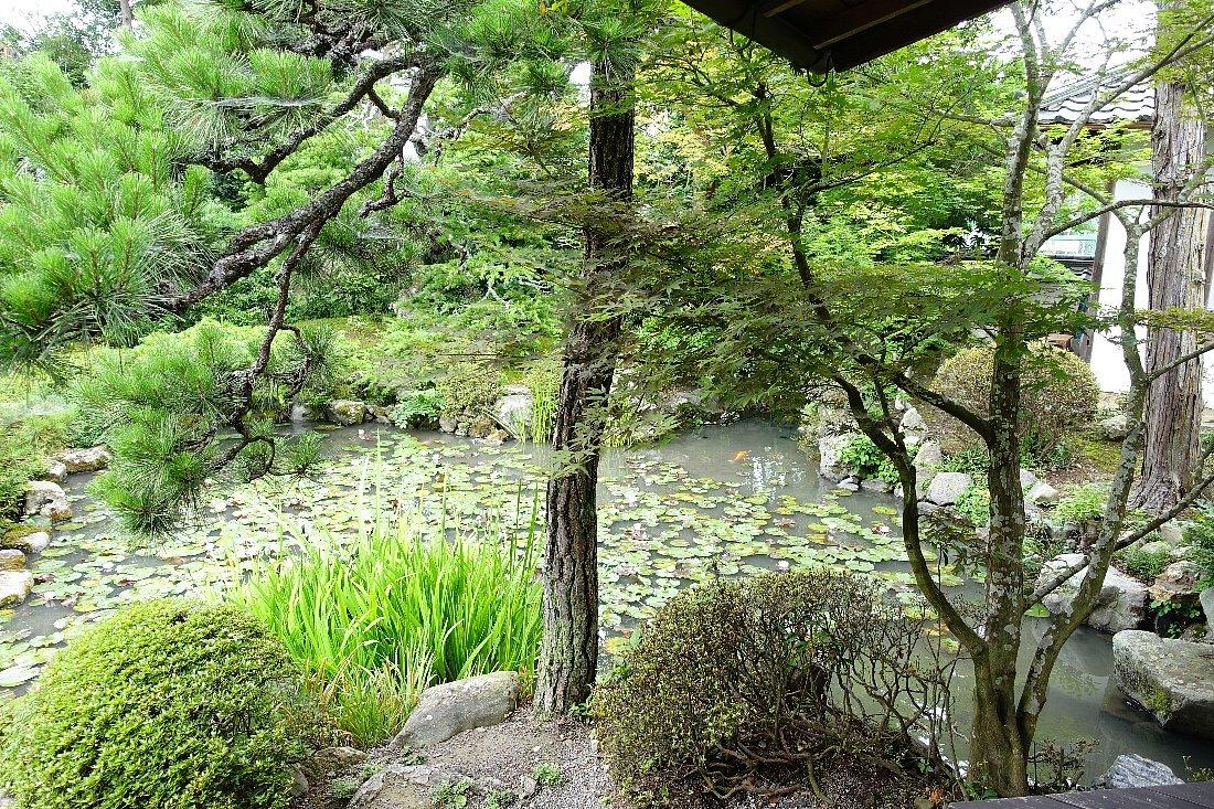 菩提山 穴太寺(その3)庭園_c0112559_07460943.jpg