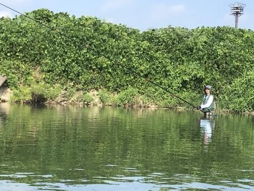 盛夏の庄川、美しい鮎_a0284480_00384634.jpg