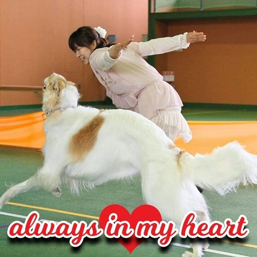 Always in my heart_e0190220_02364854.jpg