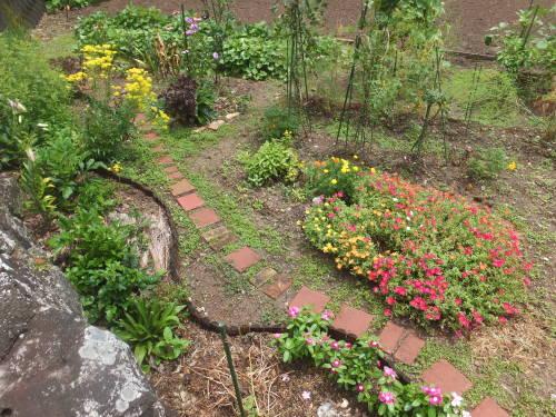マイガーデン~夏の花たち_d0336460_23025688.jpg