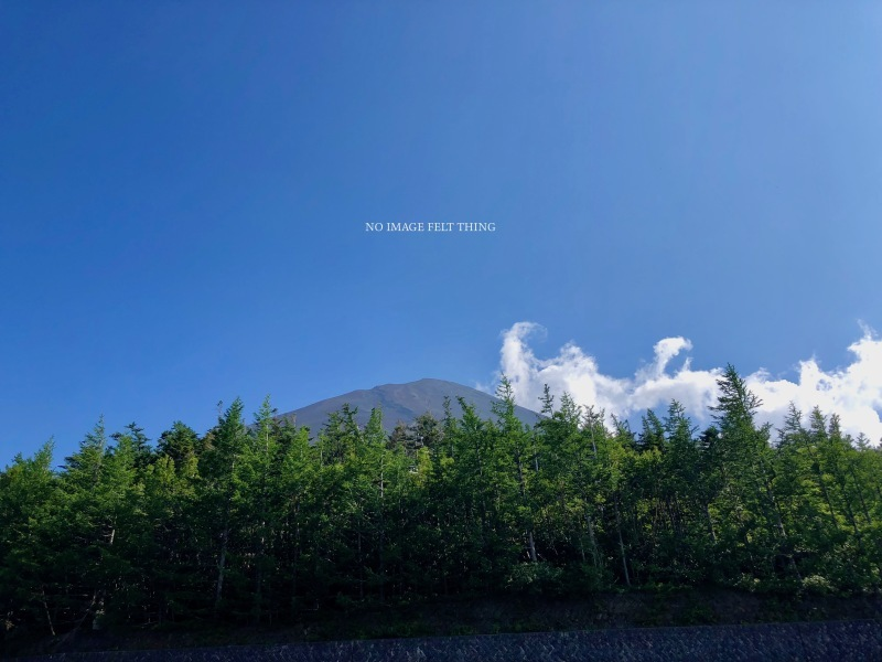 登山2019⑥*〜富士山下山〜♪_d0367763_18263093.jpg