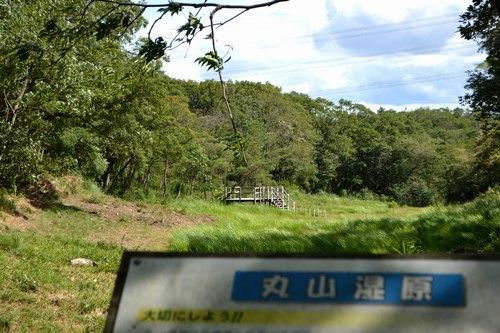 今年も丸山湿原でサギソウを見る_b0102572_09361080.jpg