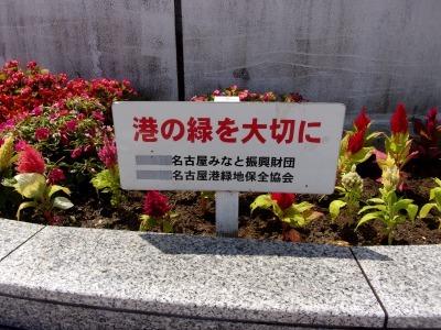 名古屋港水族館前花壇の植栽R1.8.7_d0338682_16043336.jpg