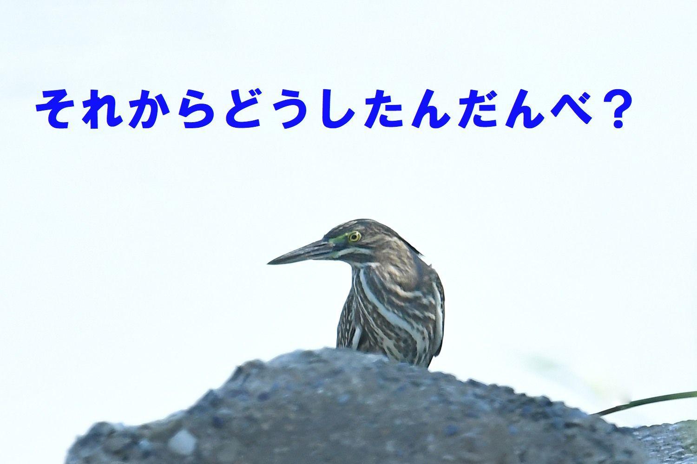 f0133213_20283139.jpg