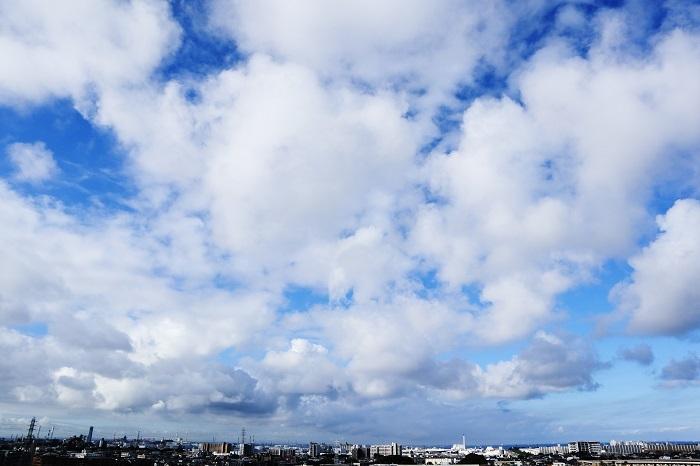 空いっぱいに舞うわた雲_b0268615_16461366.jpg