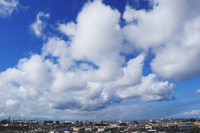 並雲(積雲)_b0268615_16591534.jpg