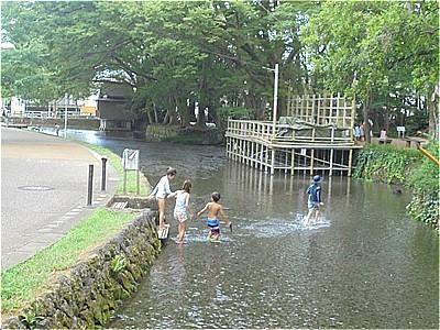子供たちの遊び場_c0087349_16491541.jpg