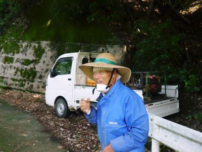 太秋柿 古川果樹園 今年も順調に成長中!摘果作業と枝吊り作業の惜しまぬ手間ひまをかけ育ています!_a0254656_17401039.jpg