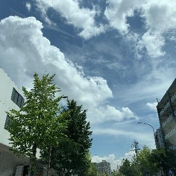 朝焼け_e0374972_17273293.jpg