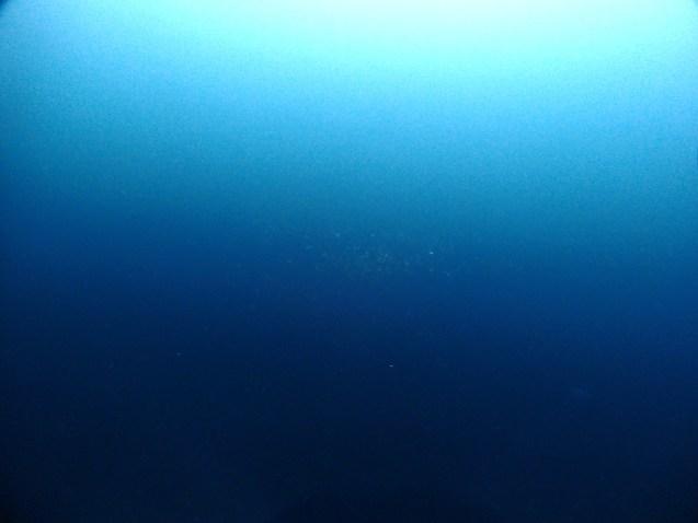 7/21 音海ツアー_e0115199_17122451.jpg