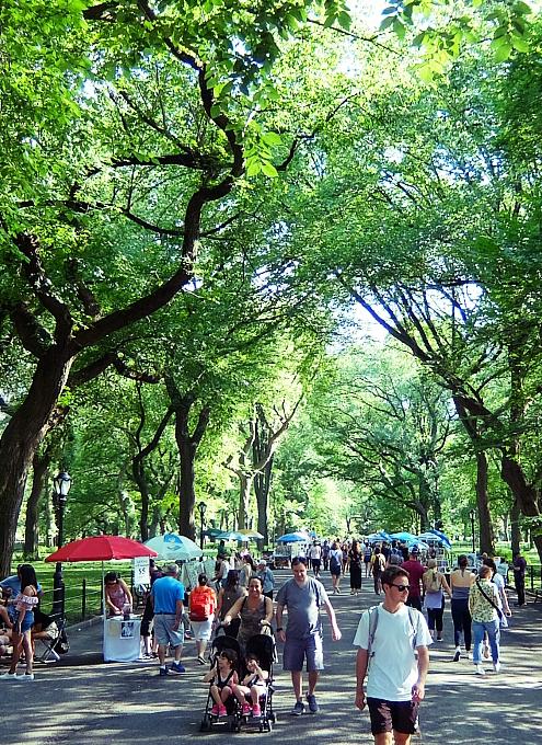 夏のニューヨークの風景、セントラルパーク最大の並木道(The Mall)_b0007805_03472336.jpg