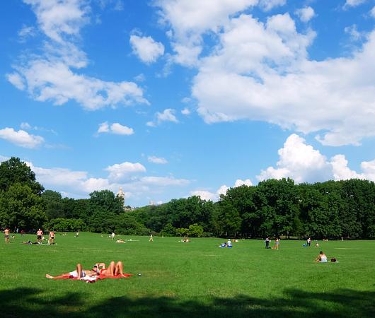 セントラルパーク最大の芝生広場、「シープ・メドウ」(Sheep Meadow)へ_b0007805_06580501.jpg