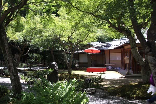 高台寺 夏の盛り_e0048413_22465757.jpg