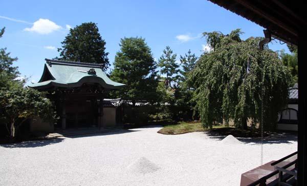 高台寺 夏の盛り_e0048413_22470169.jpg