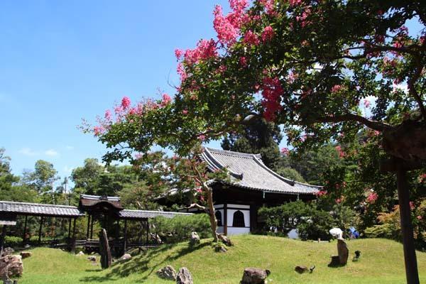 高台寺 夏の盛り_e0048413_22475997.jpg