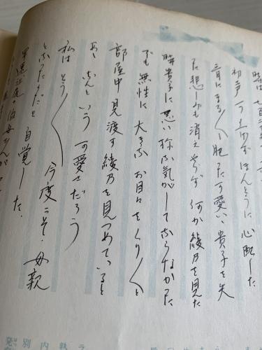 母の育児日記から私のペットロスが見えた気がした!_b0307951_19241127.jpg