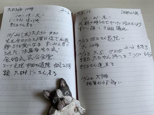 母の育児日記から私のペットロスが見えた気がした!_b0307951_20253737.jpg