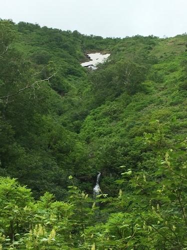 白滝村「平山」登山_e0326953_10572226.jpg
