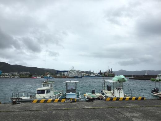 今回の台風は削れてた船名シールの補修上架って感じ_d0053180_17405122.jpg