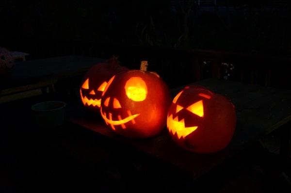 ジャイアントかぼちゃ_e0365880_21180243.jpg