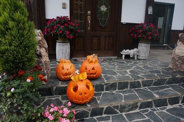 ジャイアントかぼちゃ_e0365880_21180832.jpg
