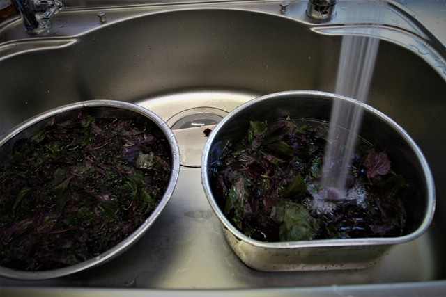 今年も赤紫蘇ジュース作り~♬_f0229190_15342684.jpg
