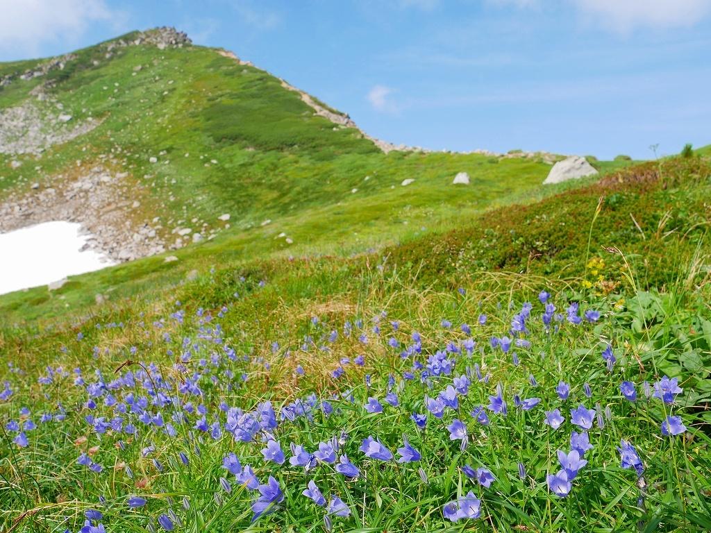 上富良野岳から十勝岳ピストン、2019.8.7ーその1ー_f0138096_13232412.jpg