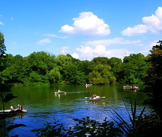 暑い夏の日にぴったり、セントラルパーク最大の湖(The Lake)の貸しボート_b0007805_06513522.jpg