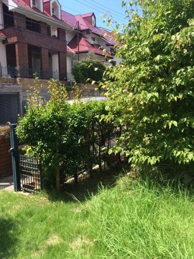 お庭のリフォーム_d0358411_19230396.jpg