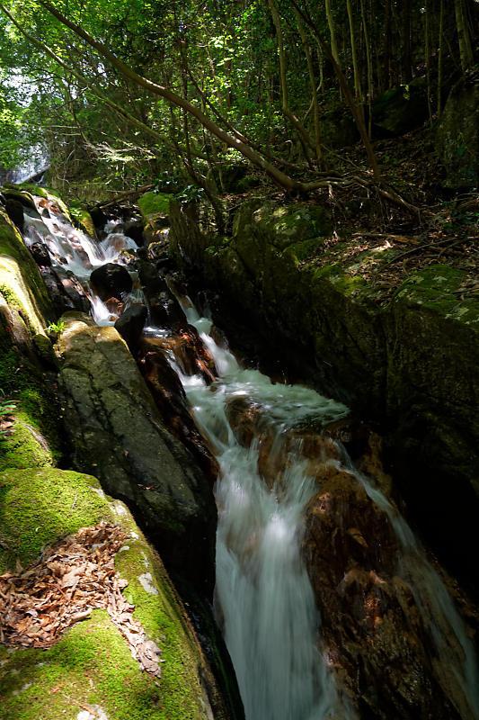 滝巡り@滋賀 鶏鳴の滝・其の二_f0032011_18562317.jpg