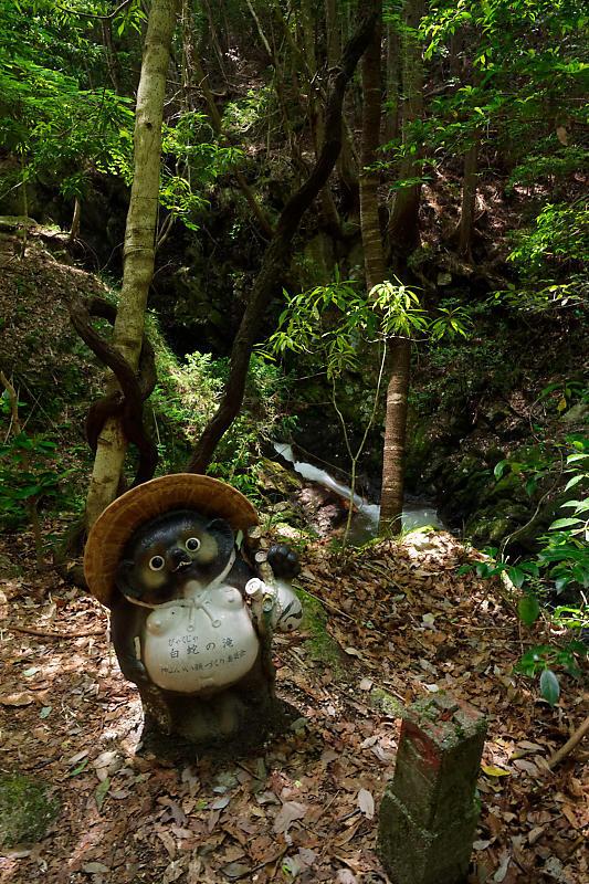 滝巡り@滋賀 鶏鳴の滝・其の二_f0032011_18562392.jpg