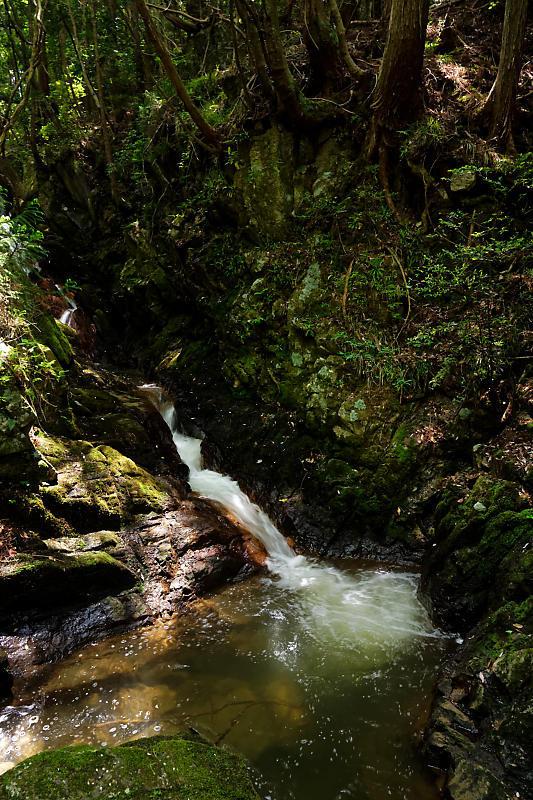 滝巡り@滋賀 鶏鳴の滝・其の二_f0032011_18562426.jpg