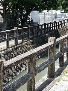 猫道  栗山由利_f0371014_09535557.jpg