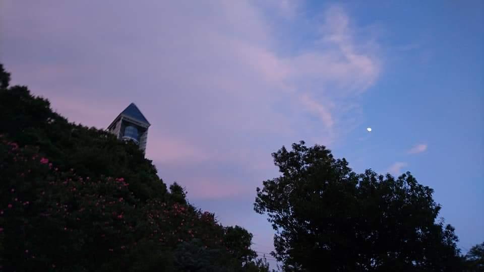 東山動植物園ナイトズー2019 初日!_f0373339_23563802.jpg