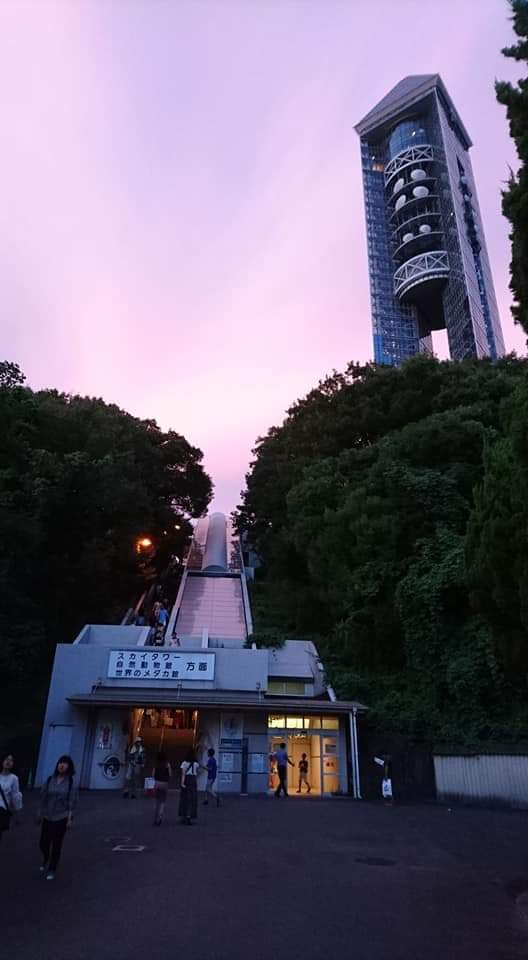 東山動植物園ナイトズー2019 初日!_f0373339_23563821.jpg
