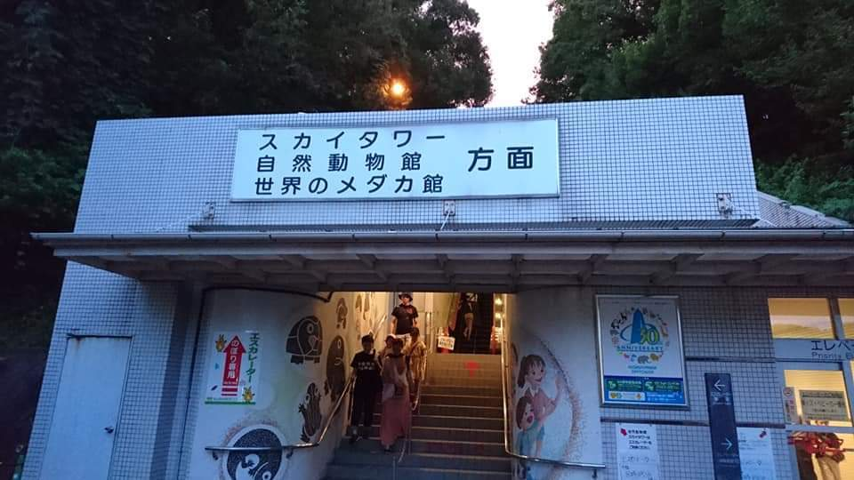 東山動植物園ナイトズー2019 初日!_f0373339_23563854.jpg