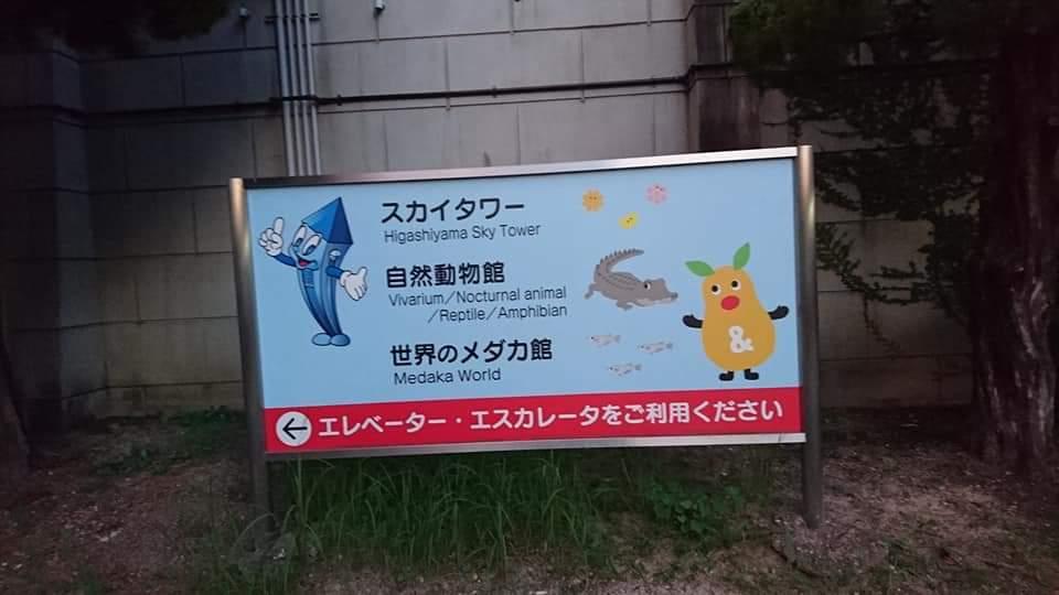 東山動植物園ナイトズー2019 初日!_f0373339_23563877.jpg