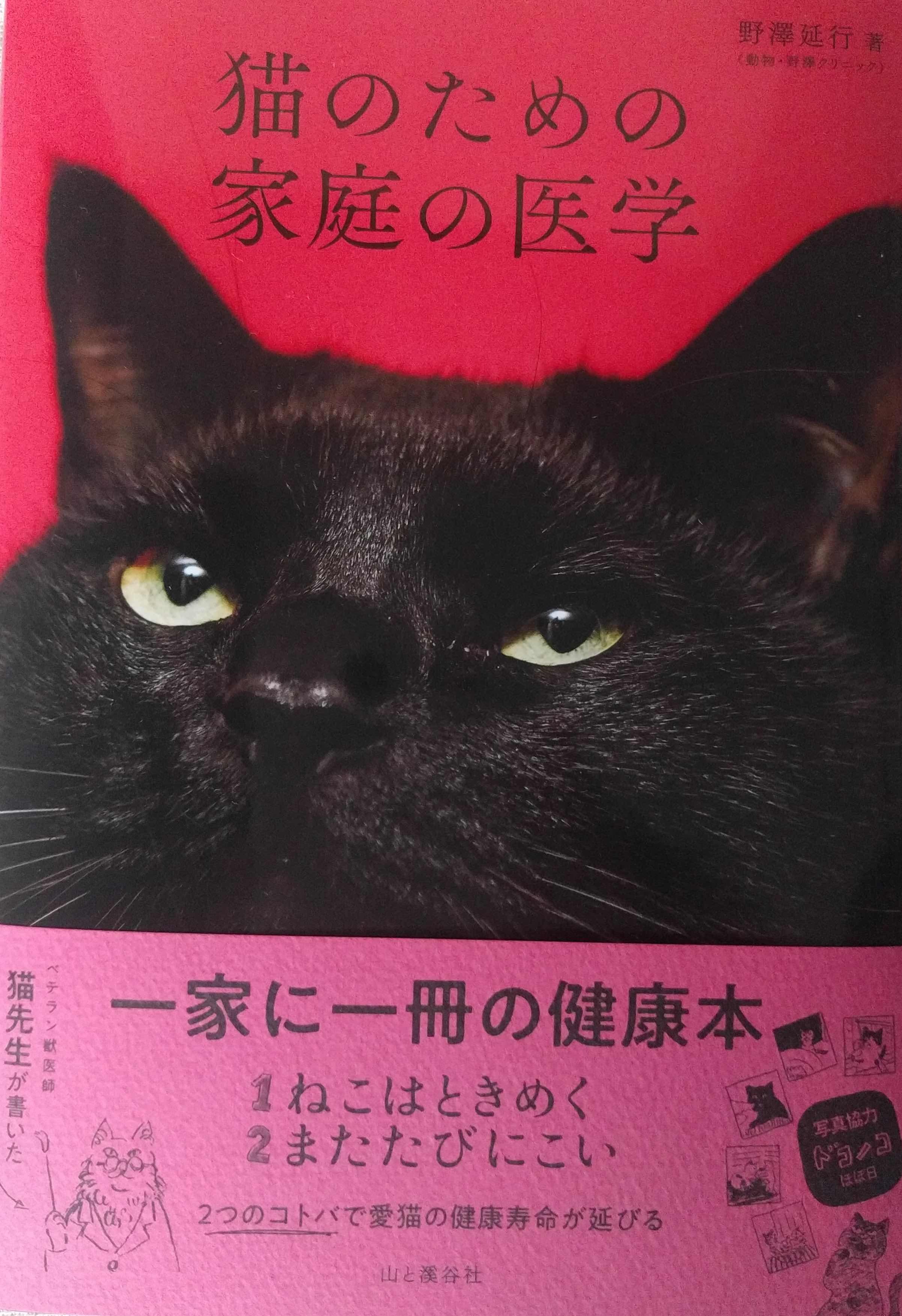 猫本1_a0265743_00503087.jpg
