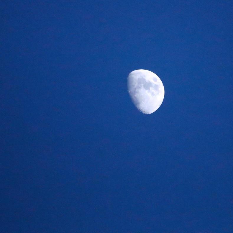 見上げると白い月_c0060143_23511504.jpg
