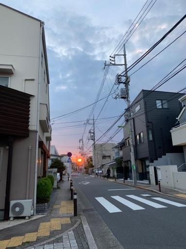 しぼったばかりの夕陽の赤が…落陽。山田パンダ_b0096957_20133436.jpeg