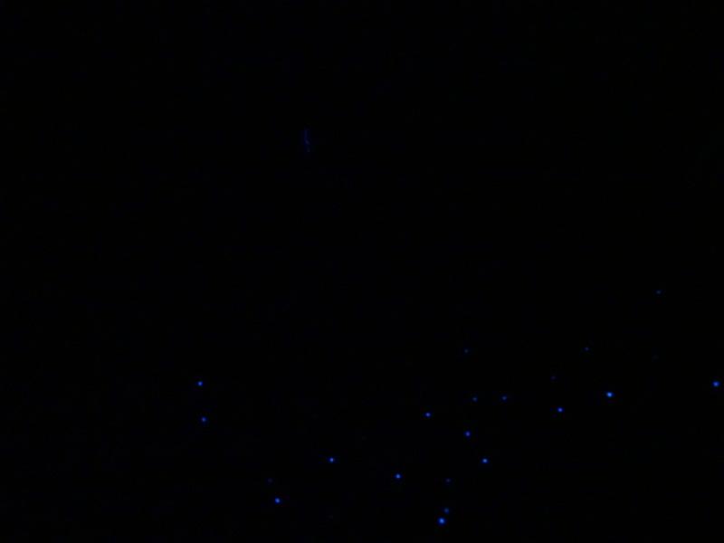 「ウミホタル観察会」リハーサル&読売TV取材協力・・・うみべの森_c0108460_00331304.jpg