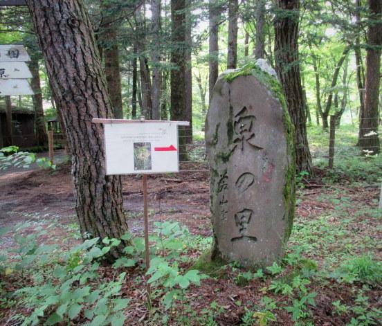 木村硝子店 * 軽井沢庭市2019・夏のお楽しみ♪_f0236260_02125287.jpg