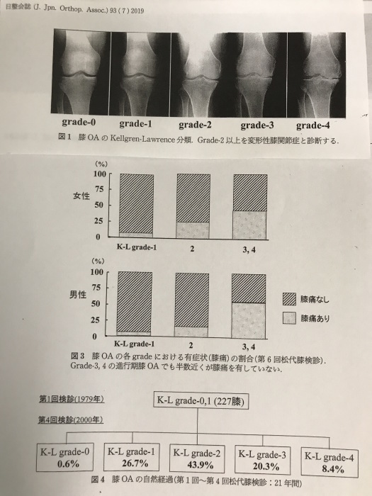 変形性膝関節症_b0052170_15194234.jpg