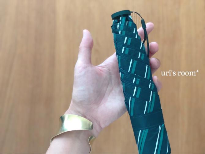 超軽量の折りたたみ傘が、想像以上に軽くてビビった件。_a0341288_00502397.jpg