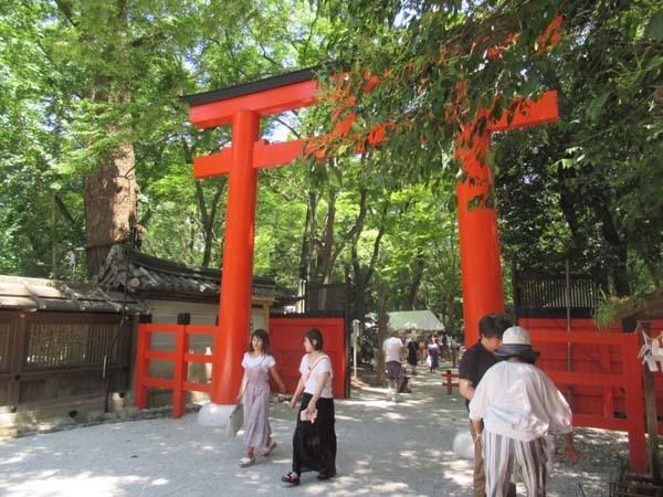 納涼古本まつり 下賀茂神社糺の森_e0048413_21594247.jpg